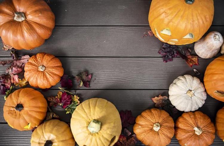 Dynia na Halloween - nie tylko do ozdoby